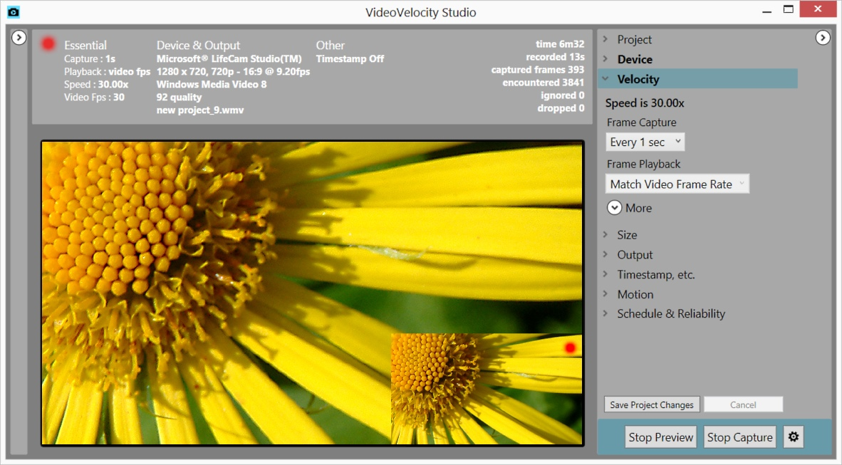 Click to view VideoVelocity screenshots